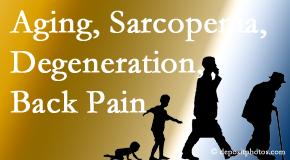 Minster Chiropractic Center lessens a lot of back pain and sees a lot of related sarcopenia and back muscle degeneration.