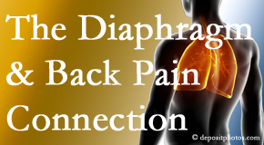 Minster Chiropractic Center recognizes the relationship of the diaphragm to the body and spine and back pain.