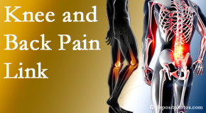 Minster Chiropractic Center treats back pain and knee osteoarthritis to help prevent falls.