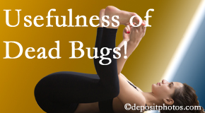 Minster Chiropractic Center finds dead bugs quite useful in the healing process of Minster back pain for many chiropractic patients.