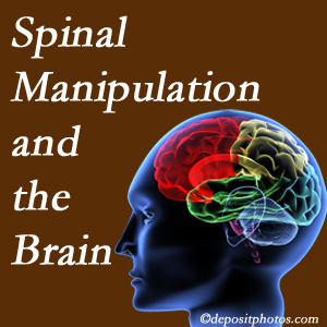 Minster Chiropractic Center [shares research on the benefits of spinal manipulation for brain function.